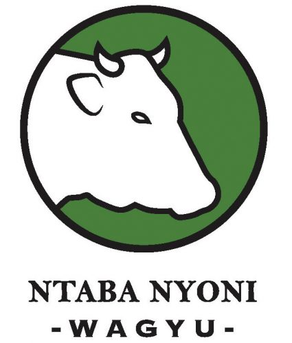 Ntaba_logo_-_Cyril_rgb